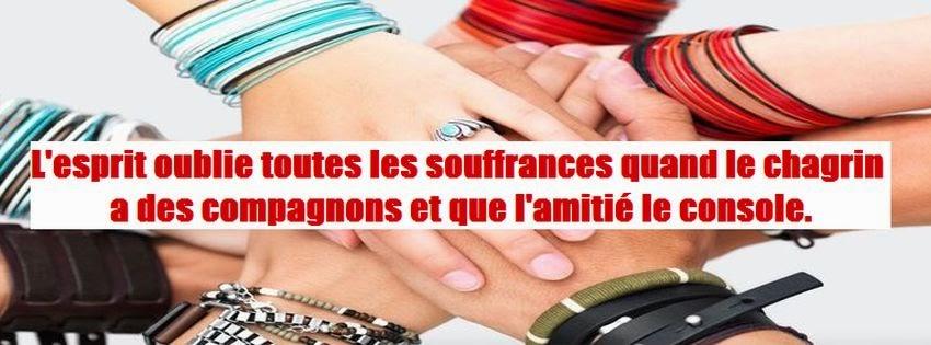 Citation amitié pour facebook