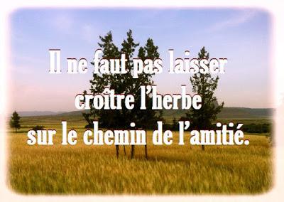 Proverbe d'amitié en français