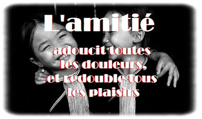 Citation d'amitié touchante