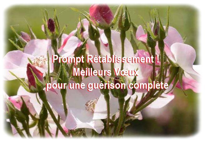Message d 39 amitie pour un ami malade citation d 39 amiti for Bouquet de fleurs pour un malade